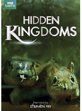 hiddenkingdoms